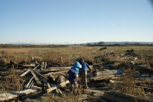 birding with children, Camano Island birding, winter birds in Washington
