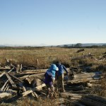 birding with children, Camano Island birding, winter birds in Washington