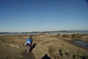 birding camano island, winter birding washington, bird watching with children