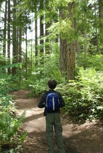 paradise valley conservation area, hiking with children