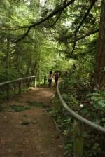 Camp Long Trails