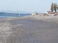 Beach and Lighthouse, Discovery Park