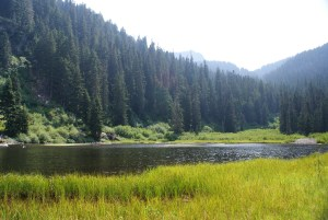 cold creek trail, twin lakes, hiking with children