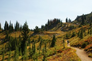 hiking with kids, mount rainier hiking, naches loop trail