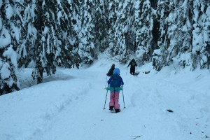 snowshoeing snoqualmie pass, gold creek snowshoe, winter hikes with kids