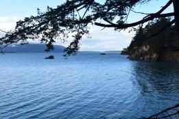hiking with children, bellingham hiking, beach, winter hikes