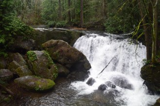 bellingham hikes, hiking with children