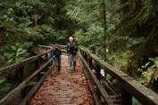 east bank baker lake, winter hikes, fall hikes, washington, hikes for kids