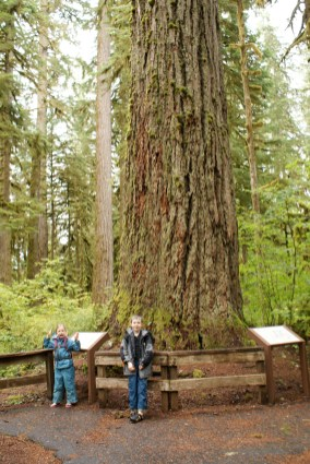 shadow of the sentinels, baker lake trails, hiking with children, winter hikes