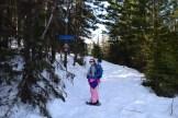 blewett pass snowshoeing, snowshoeing with children, winter hiking