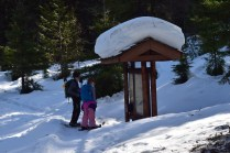 swauk forest discovery trail, hiking with kids, winter snowshoeing, blewett pass