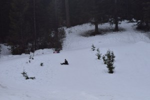 blewett pass sno-park, winter hikes for kids, sledding