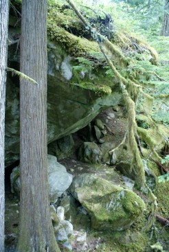 north cascades national park, best hikes for kids