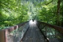 north cascades national park, best hikes for kids, summer hikes, newhalem, trail of the cedars