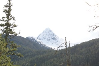 thunder knob trail, north cascades national park, best hikes for kids, hiking with children