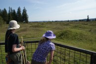 hikes for kids, spring hiking, south puget sound hikes, geology washington