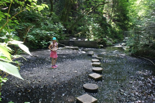 boeing creek park, shoreline parks,