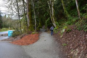 bellingham hikes, hiking with children, hikes for kids
