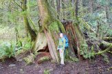 squires lake trail, hiking with children, best hikes for kids, bellingham hiking