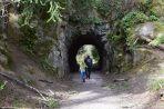 bellingham hikes, hikes for kids, spring
