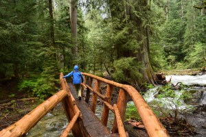 hikes for kids, stevens pass, waterfall hiking