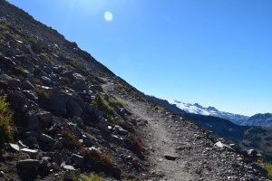 burroughs mountain, best hikes for kids, fall hiking, mt rainier
