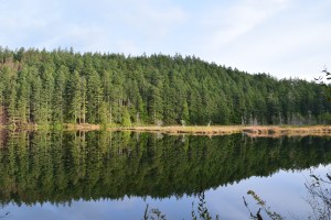 little cranberry lake, anacortes community forest land, winter hiking, best hikes for kids, reflections,