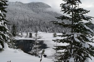 gold creek, snowshoeing, hikes for kids, snow