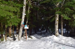 snowshoeing, salmon ridge sno-park, snowshoes for kids, winter hikes