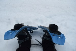 winter snowshoe trips for kids, razor hone road, salmon ridge sno-park