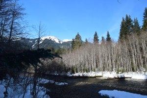 nooksack river, salmon ridge sno-park, winter hiking families