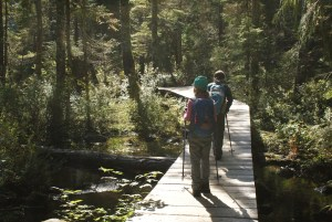 best hikes for kids, mountain loop highway,