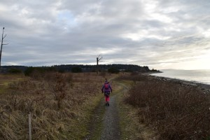 semiahmoo spit, park, hikes for kids, nature walks, blaine, washington