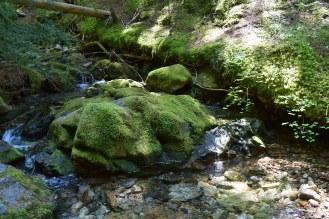 pyramid lake trail, north cascades, highway 20, stream