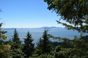 larrabee state park, fragrance lake trail, best hikes for kids, summer, padilla bay, salish sea