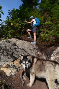 best hikes for kids, blue lake trail, hiking with dogs, steep, clambering, summer, fall