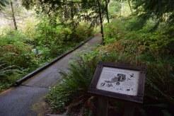 redmond watershed preserve, hikes for kids, interpretive trail,