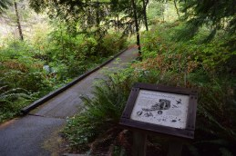 redmond watershed preserve, hikes for kids, interpretive trail,