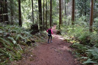 hikes for kids, redmond watershed trail, kids in nature, forest