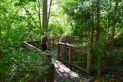 carkeek park, hikes for kids, nature, trails, seattle parks, pipers creek