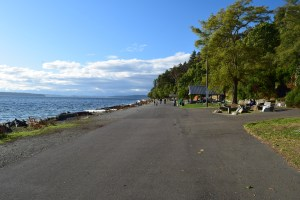 lincoln park, west seattle hikes for kids, nature, puget sound