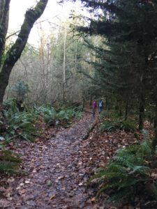 hazel wolf wetlands, kids on trail, kids hiking, nature walks, fall, winter
