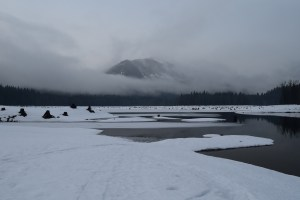 kachess lake, winter snowshoe trip, hikes for kids,