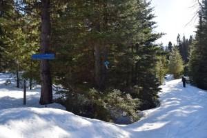 pipe creek sno-park, blewett pass, winter hikes, snowshoe trips for families, washington, blewett pass