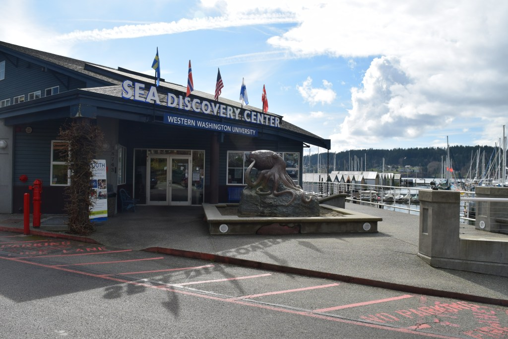 aquarium, Poulsbo, marine life, kitsap peninsula, activities for children, free activities