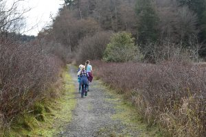 best hikes for kids, puget sound, point no point county park, kids hiking, trails for families,
