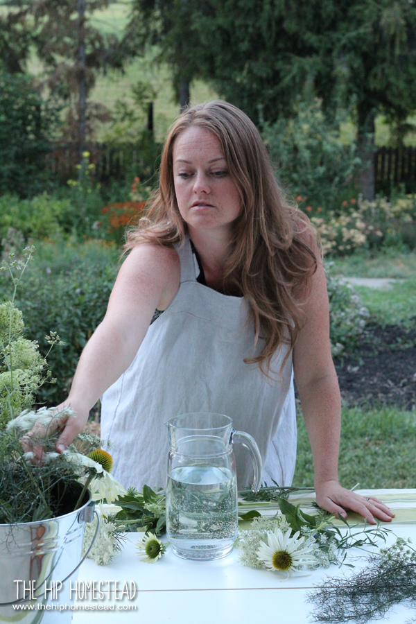 My Journey to Herbal Health - The Hip Homestead
