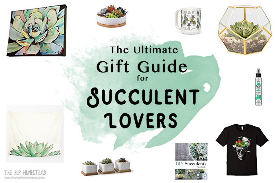 Pleasant The Ultimate Gift Guide For Succulent Lovers The Hip Homestead Home Remodeling Inspirations Basidirectenergyitoicom