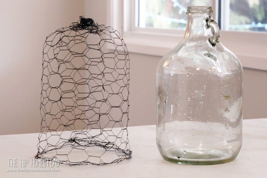 How to make an easy chicken wire cloche - The Hip Homestead