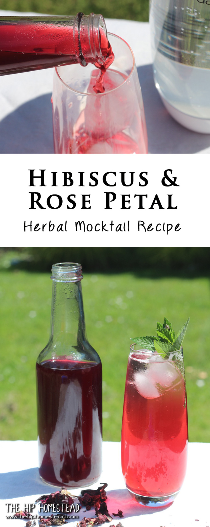 Bottle of Hibiscus and Rose Simple Syrup Red Liquid on green back ground